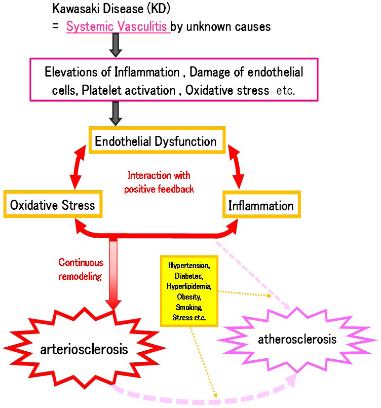 Oxidative Stress In Kawasaki Disease Vasculitis Figure 5